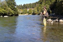 Pesca a passata